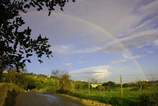 Boliqueime-rainbow
