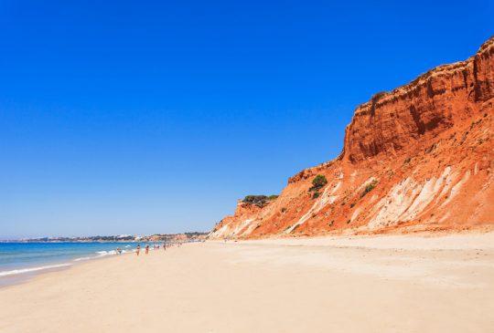 Beach falesia