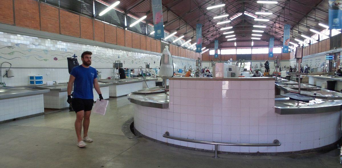 fish-market-tavira