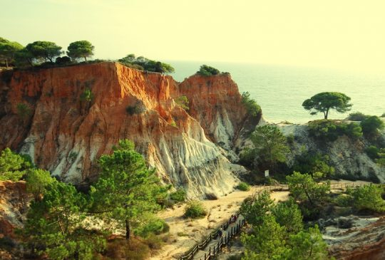 Pine Cliffs coast