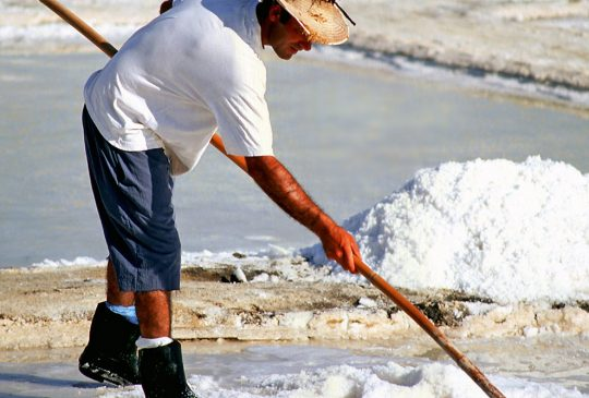 Salt-Pan-Labourer