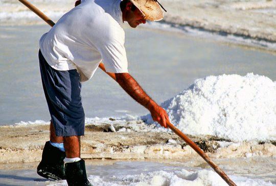 Salt-Pan-Labourer